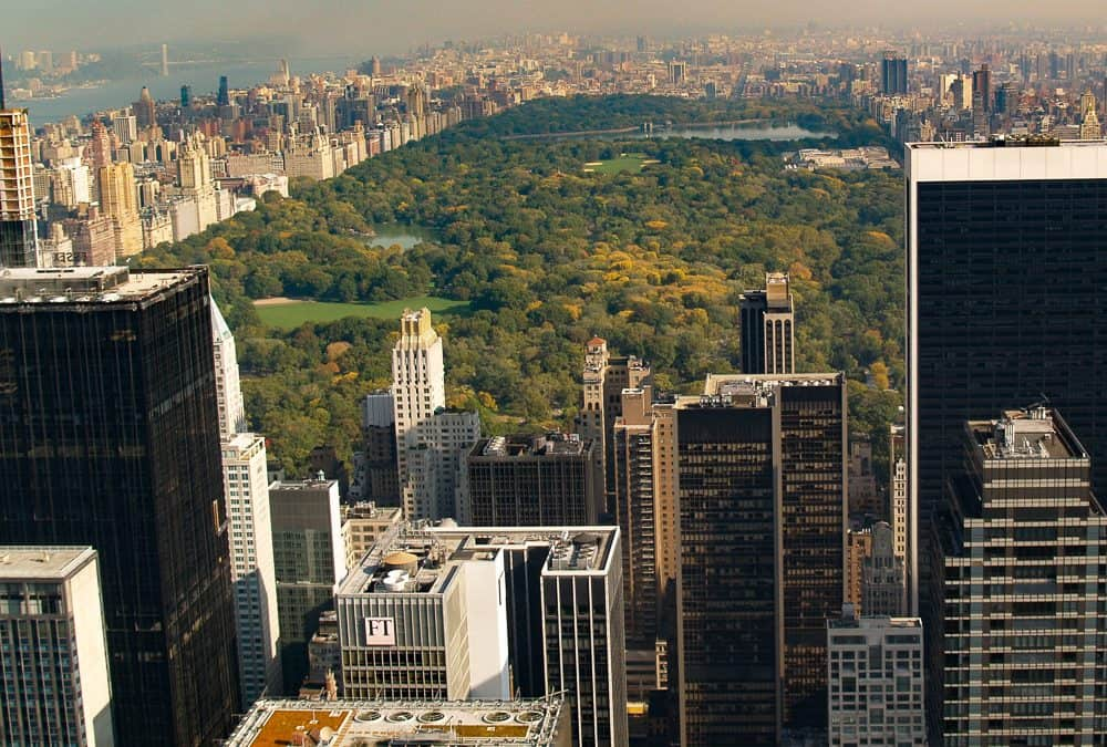 On Tour: Central Park in New York City